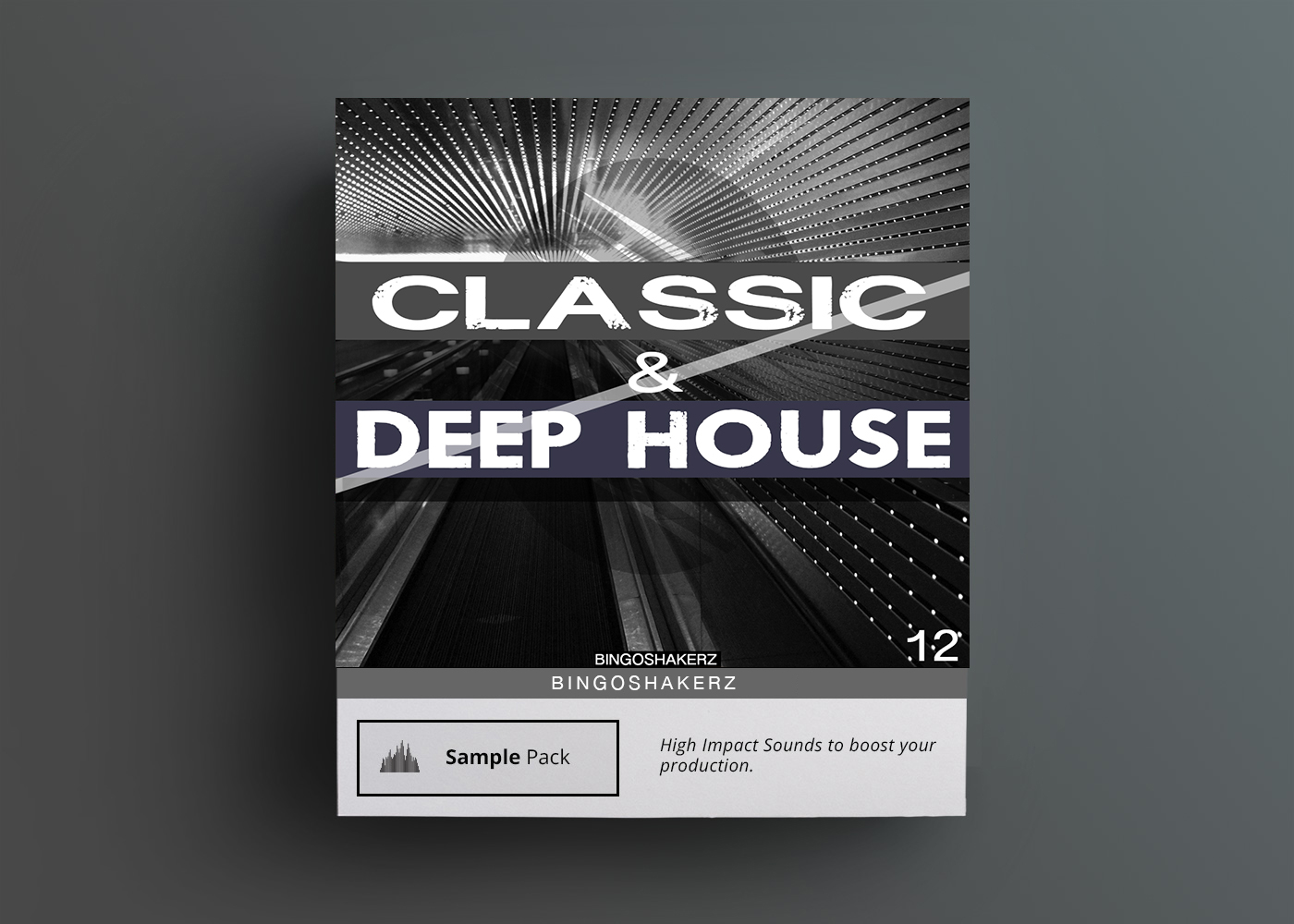 Bingoshakerz classic deep house by ted nilsson warp for Samplephonics classic deep house