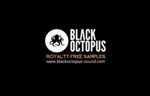 black-oct-royalty-free-samples