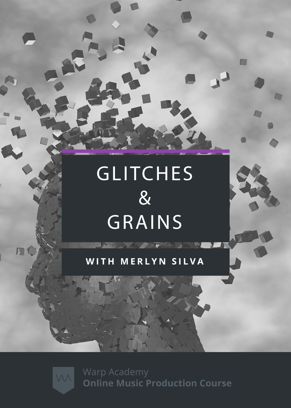 Glitches and Grains Product Page Image