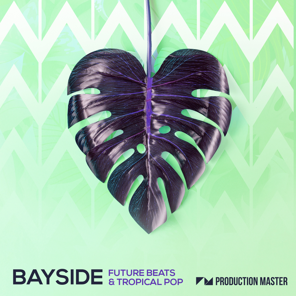 Production Master | Bayside - Future Beats & Tropical Pop